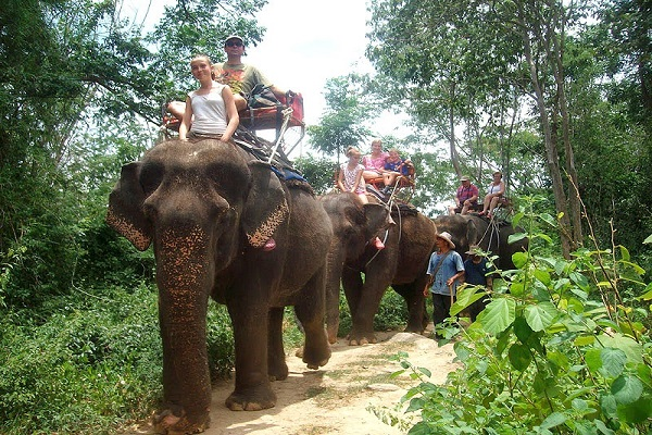 Elephant Camps and Trekking in Hua Hin